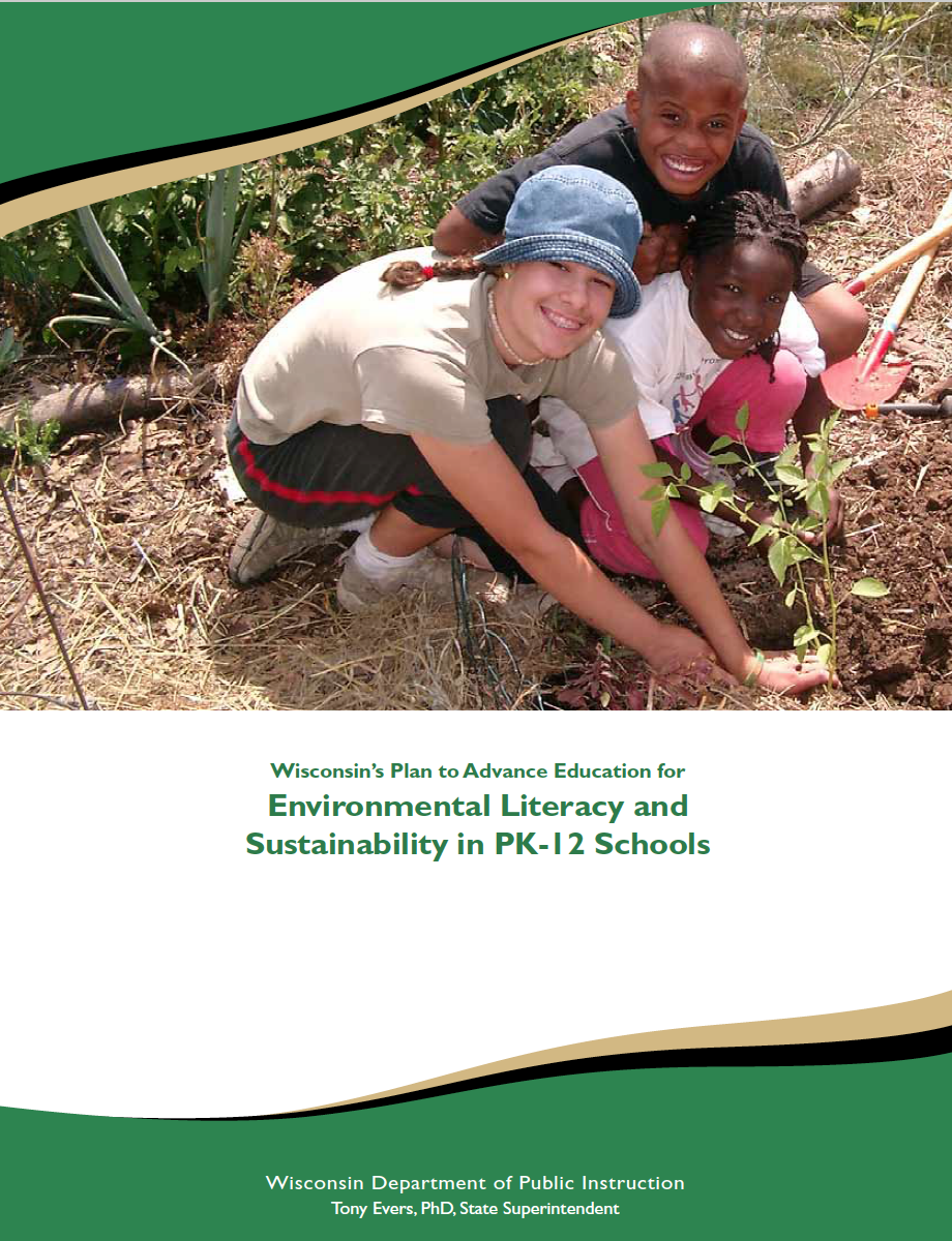 thesis on environmental sustainability