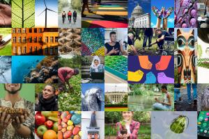 grid of multiple images of nature, people, buildings, tech