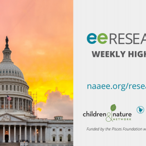 Graphic for eeRESEARCH. The US Capitol Building stands against an orange, red, and pink sky.