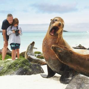 Adult and child photographing sea lions in the Galápagos, photo by Stewart Cohen