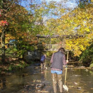 Two people walking in a shallow creek on an autumn day.