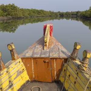 A yellow and orange wooden boat in the middle of a river lined by mangroves, taken from the boat passenger's point of view