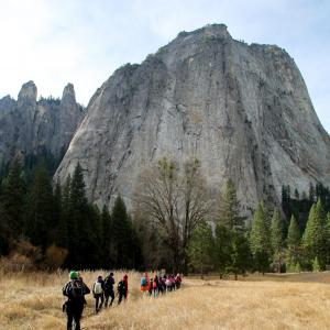 A group of students and instructors hiking through a golden meadow towards a granite cliff face