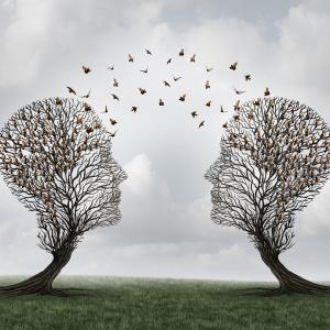 Two trees facing with birds flying between