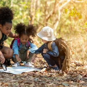 Three kids crouching on a fall-leaf laden forest floor to look at a map.