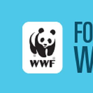 """Graphic with blue background. The WWF logo on the left and dark blue text on the right reads """"FOOD WASTE WARRIORS"""""""