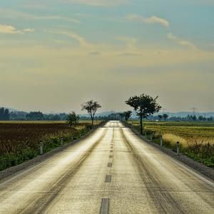 Picture of road through field