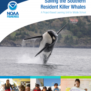 Saving the Southern Resident Killer Whales