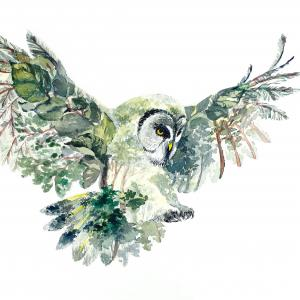 watercolor of flying owl made up of different plants