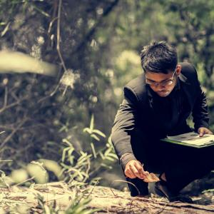 young man studying leaves in forest