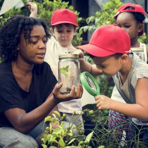 Young children examining plant with adult woman